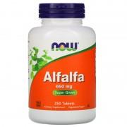 Now Foods Alfalfa 650 mg 250 tabs